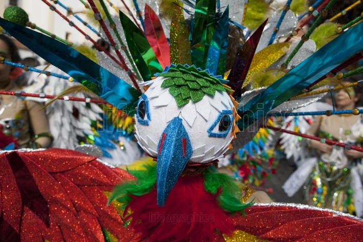 Multicolored carnival bird