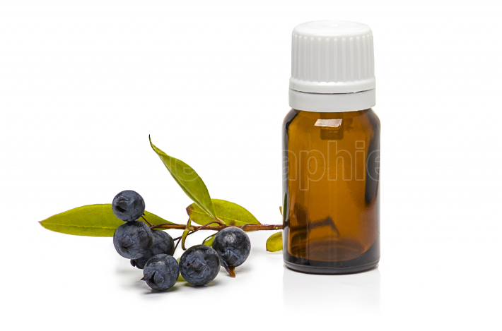 Myrtle berries and bottle of essential oil isolated on white