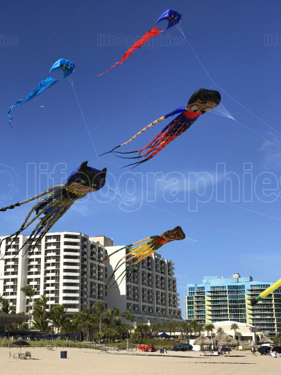 Octopus Superhero Kites Soar Above Fort Lauderdale Beach