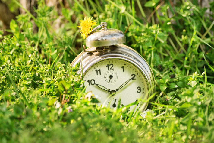 Old fashioned clock on a meadow