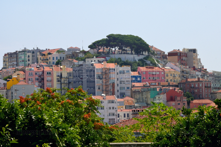 Old Lisbon city and buildings in summer
