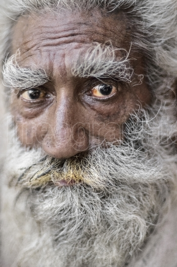Old man portrait from New Delhi