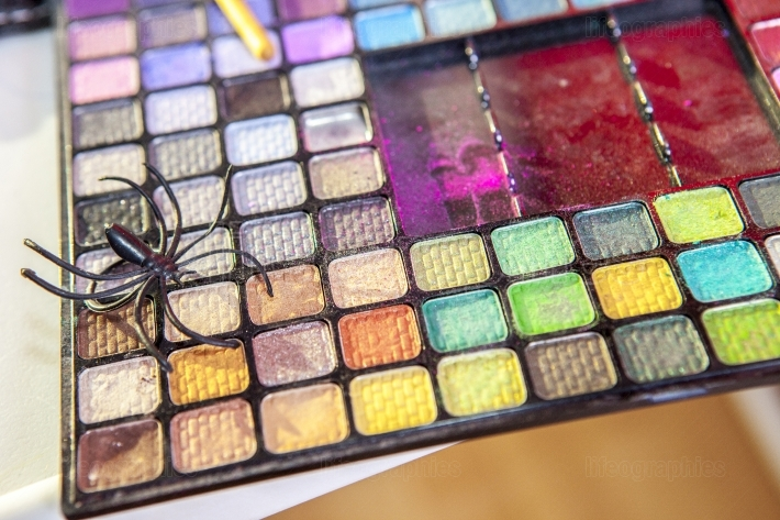 Professional eyeshadow case with spider toy