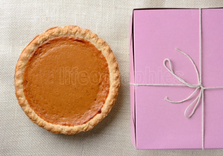 Pumpkin Pie and Pink Bakery Box