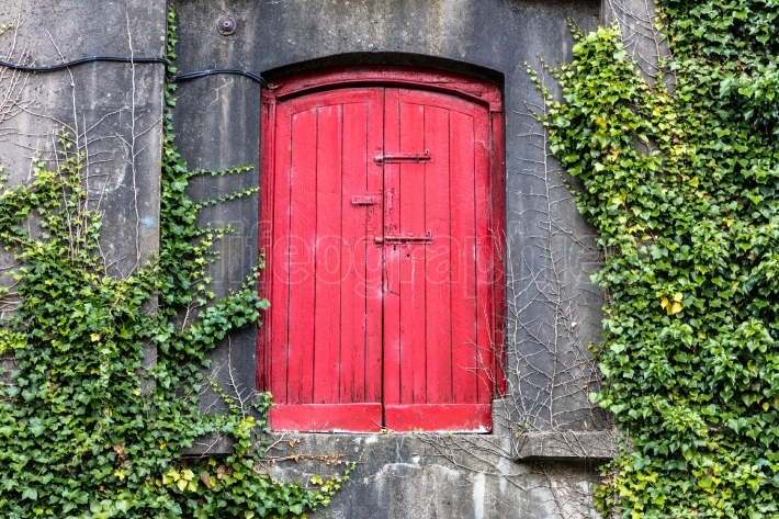 Red door on wall