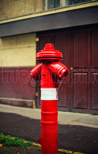 Red fire hydrant on a sidewalk of a street