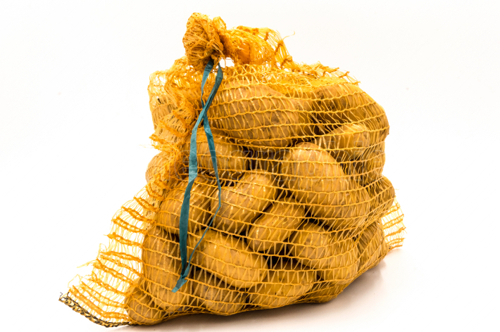 Ripe potatoes in burlap sack isolated
