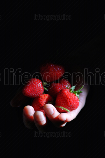 Strawberry  in Woman Hand