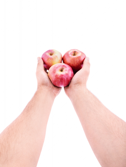 Stretched out hands offering red apples