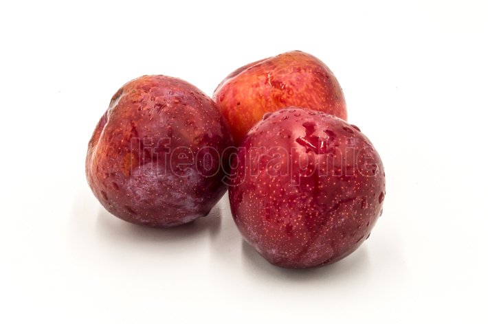 Three ripe red round plums isolated