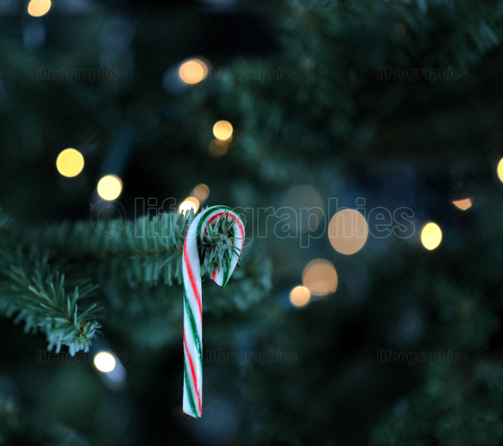 Traditional artificial Christmas tree with candy cane and white