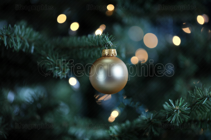 Traditional artificial Christmas tree with gold ball ornament an