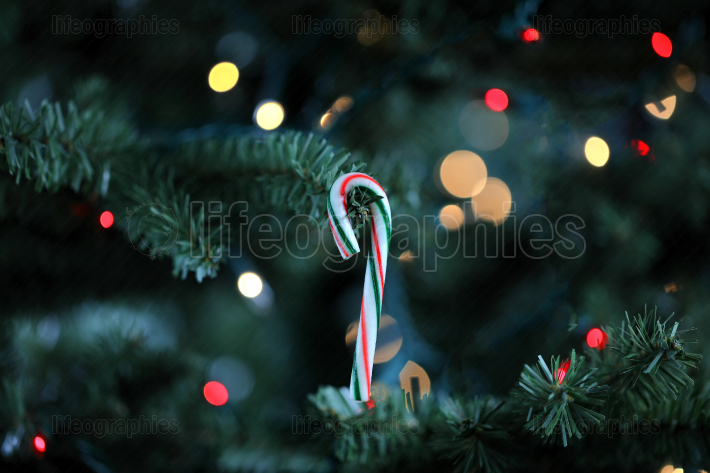 Traditional artificial Christmas tree with hanging candy cane or