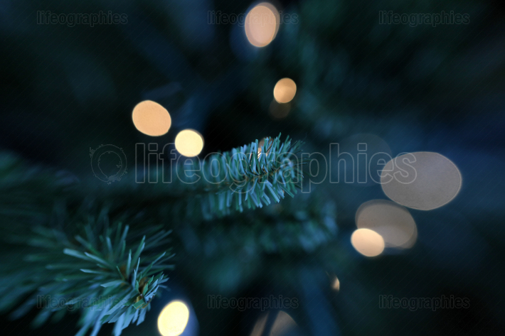 Traditional artificial Christmas tree with white lights in backg