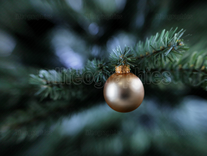 Traditional golden color single Christmas ball ornament hanging