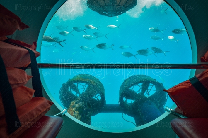 Underwater view from submarine in Gran Canaria, Spain