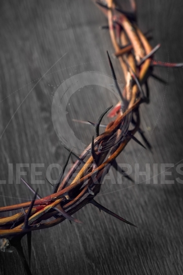 View of branches of thorns woven into a crown depicting the cruc