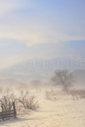 Winter field in a storm in mountains
