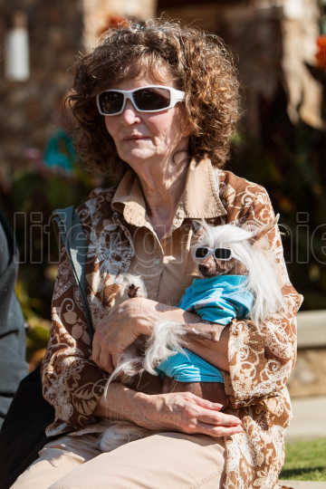 Woman And Chinese Hairless Dog Wear Matching Sunglasses At Event