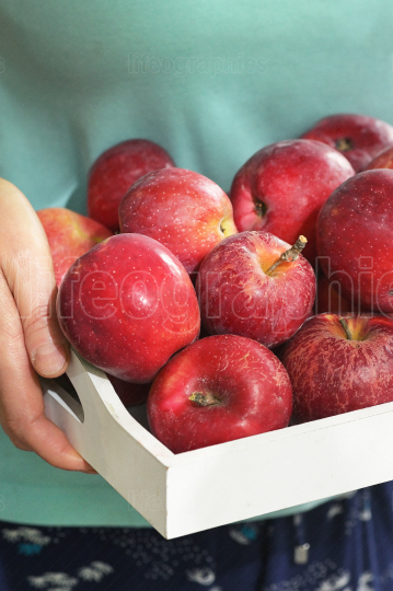 Woman holding a wooden bowl of red apples