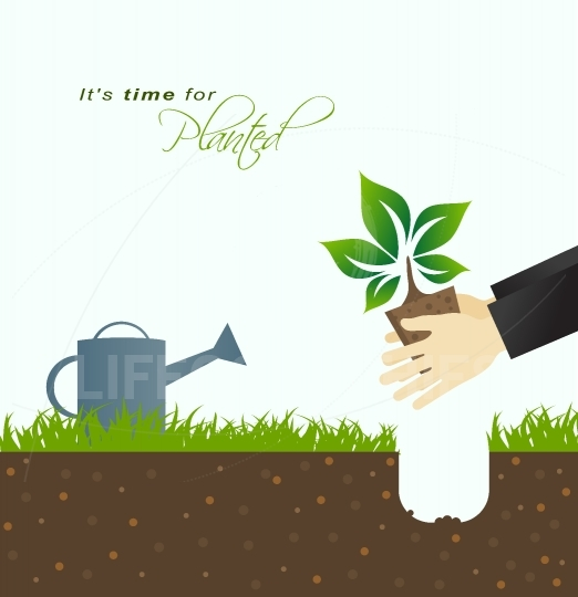 It is time for planting.Farmer planting in the ground with green
