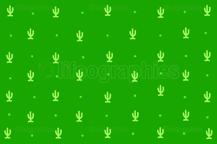 Miniature cactuses on green background