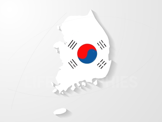 South Korea flag map with shadow effect